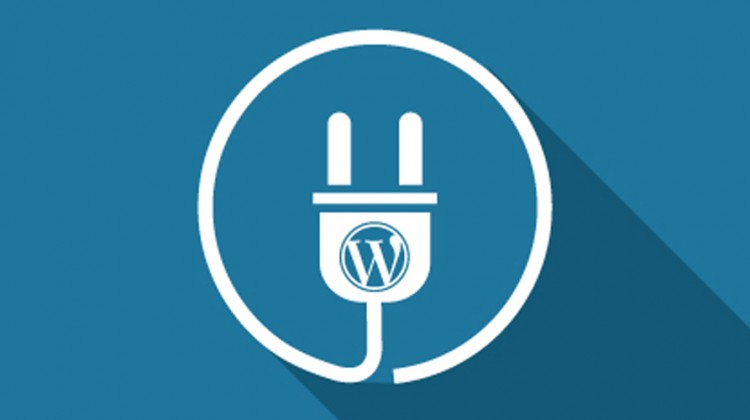 Essential Features of WordPress Plugin Development
